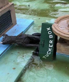 Gundagai's Landmark 'Dog On Tuckerbox' Statue Vandalised