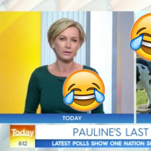Pauline Hanson Roasts Deb Knight On Today Show