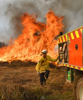 Human Remains Discovered After Horrific NSW Bushfires