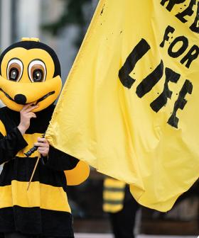 Climate Change Protesters Dressed As Bees Swarm Sydney's Hyde Park