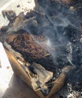 """Uh Oh! Woolworths Discovery Garden """"Spontaneously Combusts"""""""
