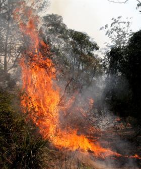 Emergency Warning For North Sydney Fire