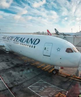 Air NZ Cancels Dozens Of Flights To Australia, 14,000 Affected
