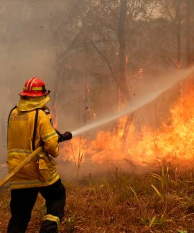 """Sydney Bushfires: """"Not Much Left In The Town Of Balmoral"""""""