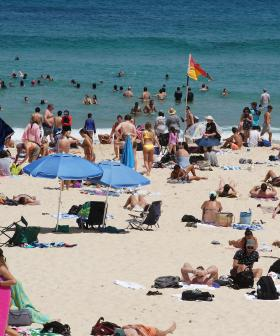 'Severe Heatwave Conditions' Set To Hit NSW, Now Until NYE