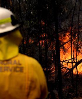 Heatwave Brings More Bushfire Danger To NSW