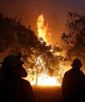 Man Caught Starting Bushfire On NSW South Coast