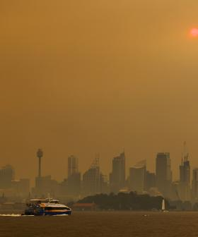 Total Fire Ban Issued As Fires Burn And Thick Smoke Haze Continues To Blanket Sydney
