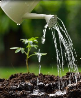 Sydney, Level-Two Water Restrictions Start TOMORROW