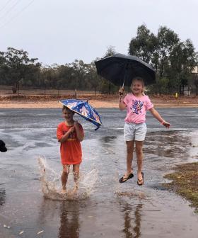 "Fire Boss Declares NSW Rain Forecast ""Best News"" In Months"