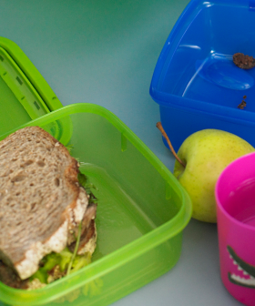 The Lunchbox Shaming Has Already Begun & It's Only Week One