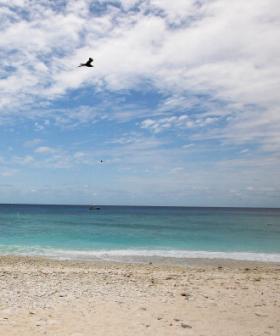 89-Year-Old Man Dies At NSW Beach