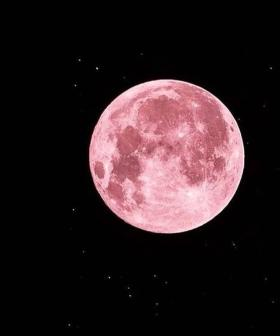 How To See April's Pink SUPER MOON Up In The Sky TONIGHT!