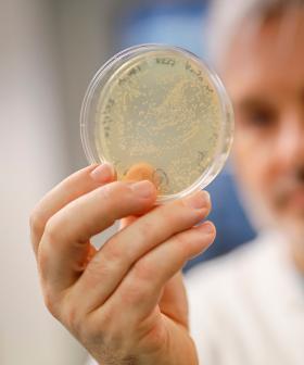 UK To Start Human Trials Of Coronavirus Vaccine This Week