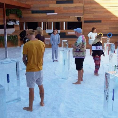 What You Didn't Get To See During The Ice Challenge On Big Brother Last Night