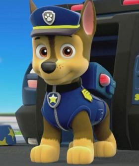 People Are Now Calling For The Cancellation Of 'Paw Patrol' Amid Black Lives Matter Movement