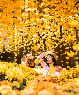 The World's Most Instagrammable Exhibit 'Happy Place' Is Reopening In Sydney