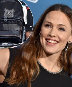 Jennifer Garner Is Out Here Walking Her Pet Cat In A Stroller And The Pics Are HILARIOUS
