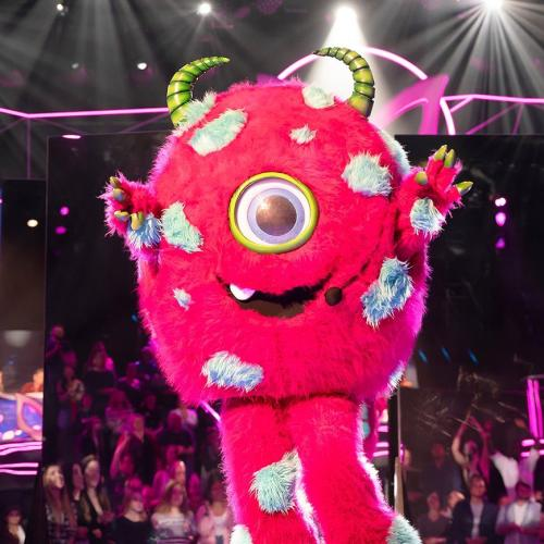 12 Brand New Masked Revealed For The Masked Singer 2020