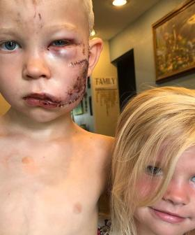 Brave Six-Year-Old Boy Risks His Life To Save Little Sister From Savage Dog Attack