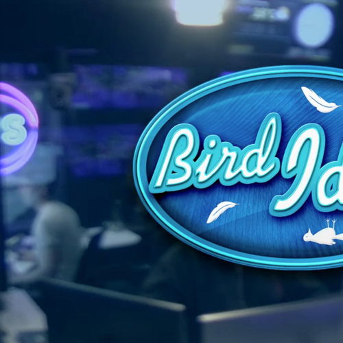 Kyle & Jackie O's BIRD IDOL - Episode 1 🎤🐦