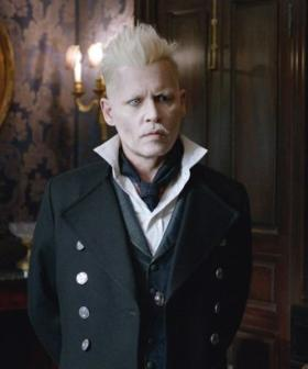 Johnny Depp Asked To Leave Harry Potter's 'Fantastic Beasts' Series