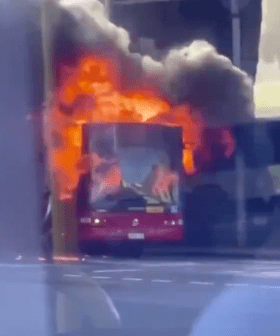 Passengers Flee Bus After It Bursts Into Flames In Sydney's Inner West