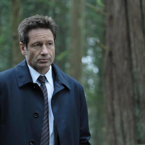 David Duchovny Admits One Thing He's Been LOVING About COVID