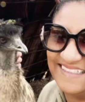 Emu EATS A Woman's $550 Earring As She Leans In To Snap A Selfie At Sydney Zoo