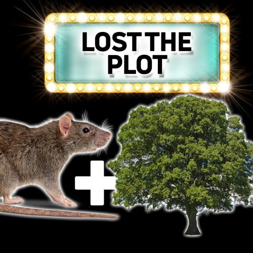'The Universe Is Saved By A Rodent And A Tree' – Can You Guess The Movie?