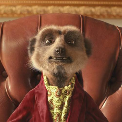 Will & Woody Chat With Aleksandr And Sergei The Meerkats About Their 'Persist We Insist Order' Letter...